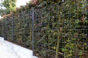 panele-ogrodzeniowe-Panele-Zenturo-Super-Betafence